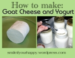 How to make goat cheese and yogurt