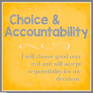 Choice & Accountabilibty
